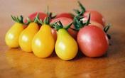 """Cà chua bi hình trái lê khiến bà nội trợ """"si mê"""""""