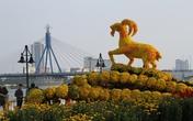 Ngắm đường hoa Xuân tuyệt đẹp ở Đà Nẵng