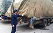 Xe chở gỗ quá tải từ Lào bị tạm giữ