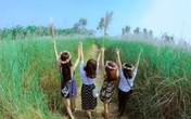 Giới trẻ đổ xô đi ngắm bãi cỏ lau tuyệt đẹp bên sông Lam