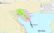 Tin tức mới nhất về bão số 1: Bão số 1 đổi hướng vào vịnh Bắc Bộ