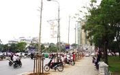 Bài học lớn từ dự án  thay thế cây xanh ở Hà Nội và kè sông Đồng Nai