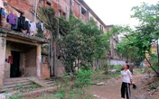 Việt Trì, Phú Thọ: Gần 100 hộ dân sống nơm nớp trong chung cư cũ