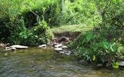Vụ thảm sát 4 người trong một gia đình ở Nghệ An: Dân không dám lên rừng một mình