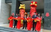 Thành lậpCoxing Việt Nam- Công ty kinh doanh hàng tiêu dùng cao cấp