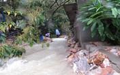 Mưa lớn bất thường ở Quảng Ninh: Sập nhà, bé 7 tuổi thiệt mạng