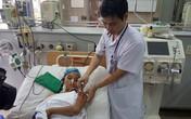 Hà Nội: Hơn 50 học sinh bị ong đốt đã xuất viện