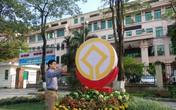 Ngắm đường hoa di sản thế giới ở Thanh Hóa