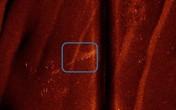 Phát hiện dấu hiệu MH370 ở Ấn Độ Dương