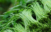 Cách ăn rau muống đúng cách để loại bỏ độc tố