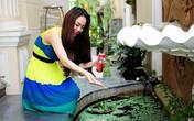 Tiểu cảnh đẹp mê ly trong sân vườn nhà sao Việt
