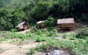Đã bắt được nghi can thảm sát 4 người trong một gia đình ở Nghệ An