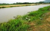 Phát hiện thi thể một người phụ nữ nổi trên sông