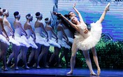 Khoảnh khắc ấn tượng trong đêm diễn 'Hồ thiên nga'
