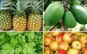 10 loại thực phẩm dễ gây sảy thai cho mẹ bầu