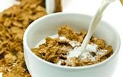 Top 7 thực phẩm có thể ăn trước khi ngủ mà không sợ béo