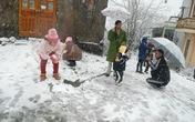 Tuyết rơi dày 10cm ở Sa Pa, mưa lớn gây sạt lở đất quốc lộ 4D