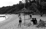 Thu phí ở Cù Lao Chàm (Quảng Nam): Bắt khách phải...lặn biển?
