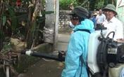 Nghệ An: Sốt xuất huyết bùng phát, 37 người mắc bệnh