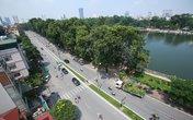 """Hà Nội bắt đầu """"hạ"""" hàng cây cổ thụ trên đường Kim Mã"""