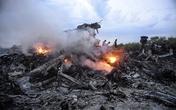 Lộ ảnh chưa từng công bố về MH17 trước khi bị bắn hạ
