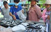 Người dân Thừa Thiên – Huế an tâm tiêu thụ cá biển trở lại