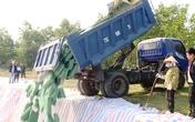 Quảng Bình tiêu hủy hơn 600 tấn hải sản sau thảm họa môi trường