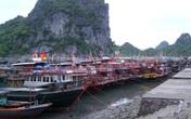 Bão số 1: Quảng Ninh cấm tàu thuyền ra khơi