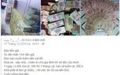 Công an điều tra các tài khoản Facebook rao bán tiền giả