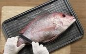 Nhận biết cá an toàn