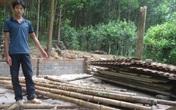 Thanh Hóa: Cần tìm hướng đi cho người dân vùng lõi Vườn quốc gia Bến En