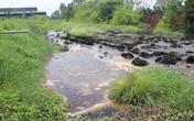 Kim Động, Hưng Yên: Dân kêu trời vì ô nhiễm môi trường nhiều năm