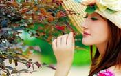 Thâm cung bí sử (87 - 2): Người đẹp con nhà nòi