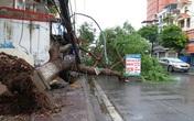 Tại hai tỉnh Hải Phòng và Quảng Ninh: Nhiều công trình dân sinh, lớp học bị hư hại trong bão số 1