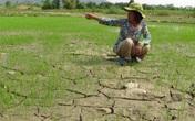 Tỉnh, thành nào sẽ thiếu nước nhiều, lâu nhất trong năm nay?