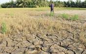 Việt Nam có nên làm mưa nhân tạo cứu hạn ở Miền Tây Nam Bộ?