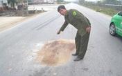 Nghi án lái xe ô tô gây tai nạn chết người bỏ trốn
