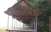 Đà Nẵng: Phát hiện nam thanh niên treo cổ tự tử ở rừng dương
