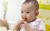 Dùng nhiều thức ăn xay nhuyễn liệu có làm trẻ biếng ăn?