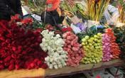 Hoa hồng Valentine tăng giá mạnh vì nguồn cung khan hiếm