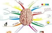 Thế nào là kích hoạt não bộ trẻ em?