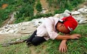 Tỉnh Lào Cai lên tiếng về việc chậm di dời dân trong cơn bão số 2