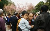 Lễ hội hoa anh đào Hà Nội không còn chỗ chen chân chụp ảnh