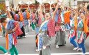 Đà Nẵng có lễ hội Hanami đầu tiên tại Asia Park