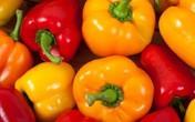 9 lợi ích không ngờ ớt chuông mang lại cho sức khỏe