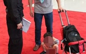 Choáng váng cảnh cha cho con trai ngồi tè ngay trên thảm đỏ trung tâm hội nghị quốc tế