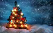Cảnh báo: Con người chết nhiều vào dịp Giáng sinh vì bệnh này