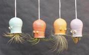16 mẫu thiết kế chậu cây treo trong nhà vừa bắt mắt vừa độc đáo