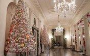 Choáng váng nhìn không gian Giáng sinh Nhà Trắng do đệ nhất phu nhân Obama trang trí