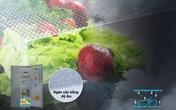 Tủ lạnh - Chìa khoá bảo quản thực phẩm tươi ngon và an toàn